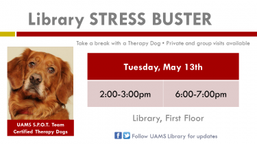 Therapy dogs May 5, 2014